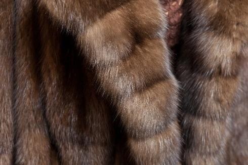 trattamento pellicce, Pellicceria Adriana