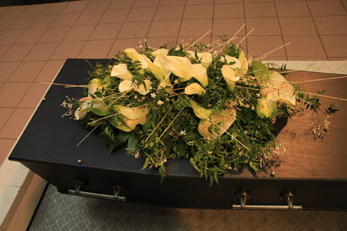 Cremation Services Greenville, NC