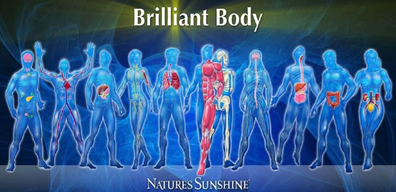 healthy body assessments in Ft Meyers FL