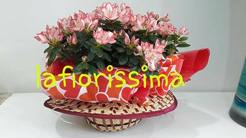composizione di fiori  LA FIORISSIMA