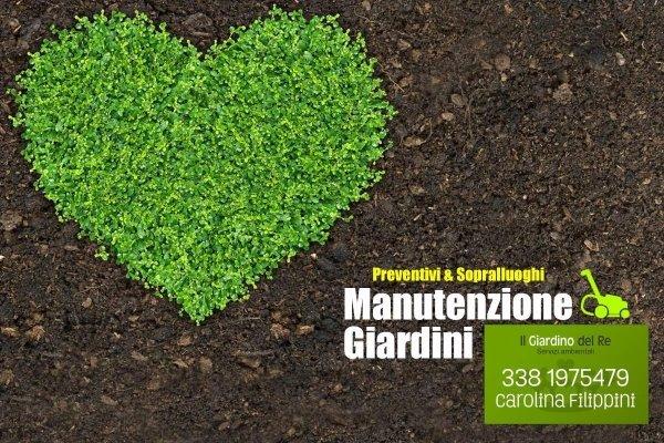 giardini, manutenzione giardini