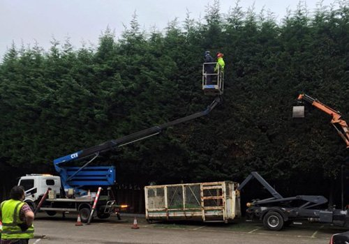 Plant maintenance work in progress at Lewes
