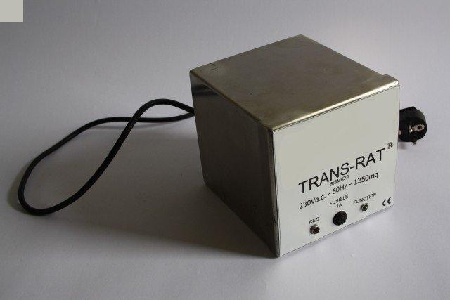 trans rat