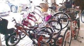 biciclette per tutta la famiglia