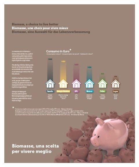 risparmio energetico, riscaldamento, impianti, a biomassa, Morlupo, Roma