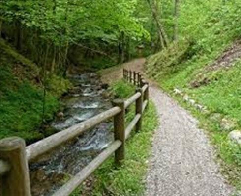 passeggiate bosco