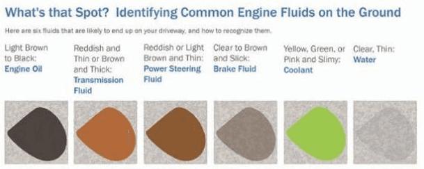Car leaks visual