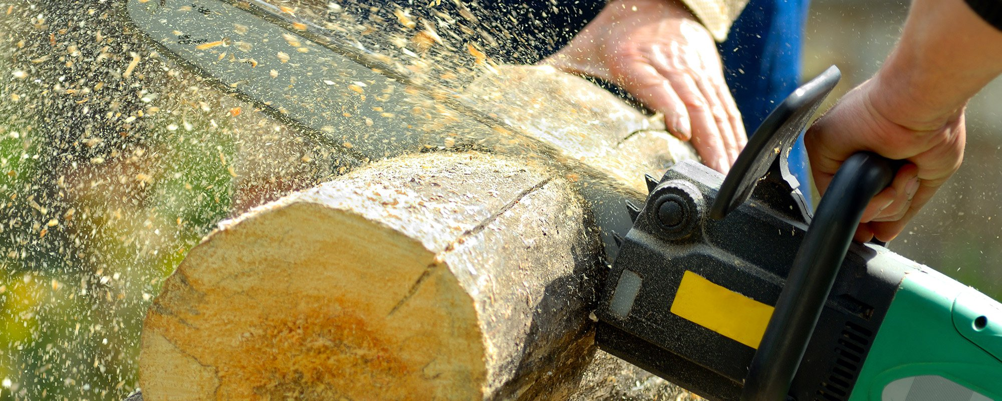 Log getting cut with the help of machine