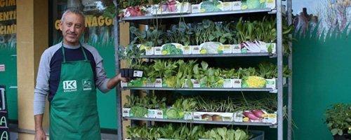 piante per giardinaggio