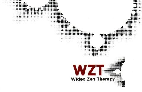 widex zen therapy