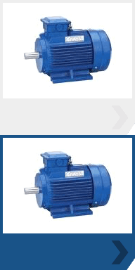A blue single phase electric motor