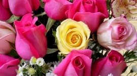 addobbi floreali, fiori freschi, fiori recisi