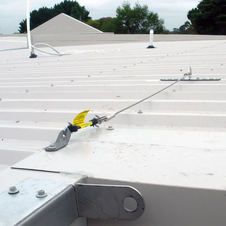 ladder entry system roof