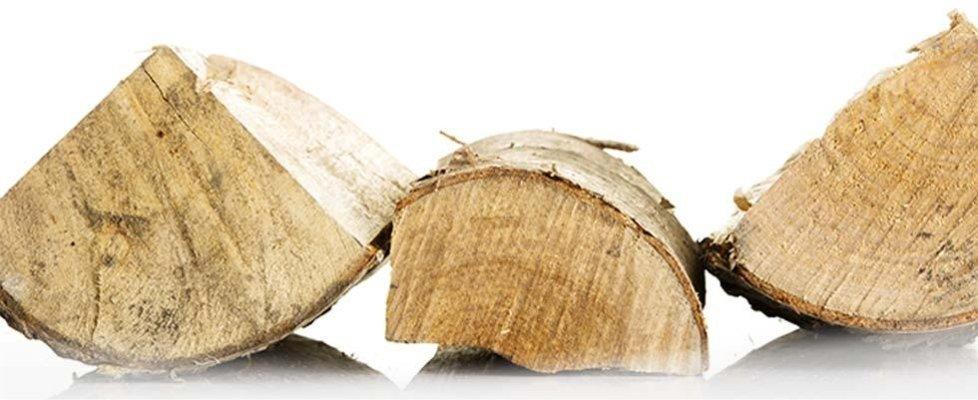 vendita legna camino