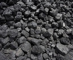 Coal & Multi_Fuel logo