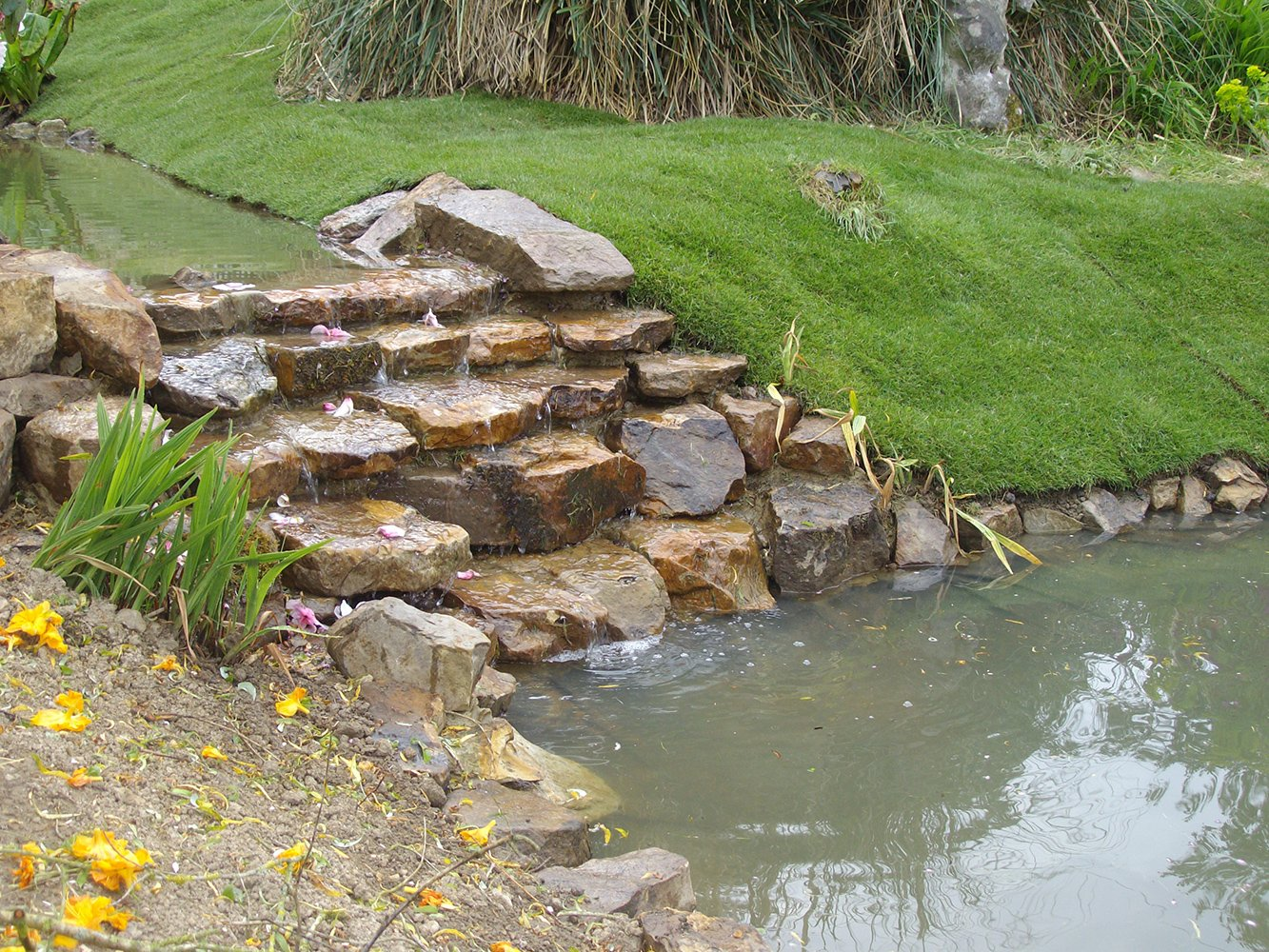 garden area pond