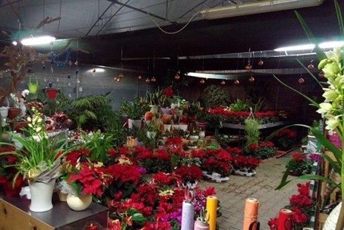 vendita composizioni floreali