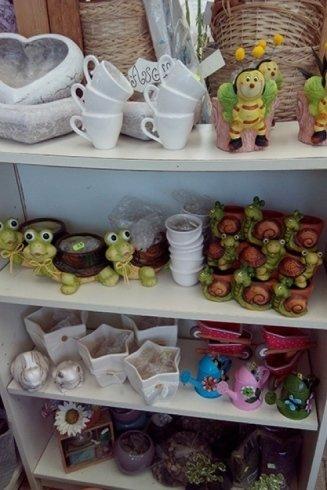 vasi piante