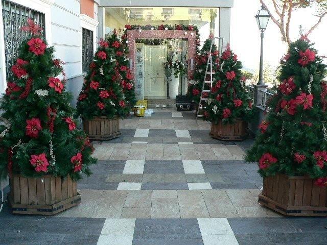 Allestimenti natalizi con alberi di Natale ecologici