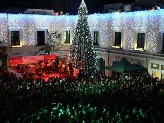 Luci natalizie con albero di Natale gigante