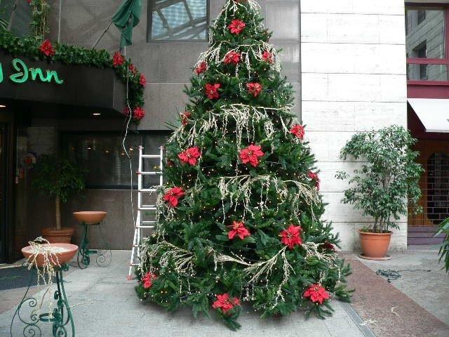 Albero di Natale ecologico con luci  installato presso Holiday Inn