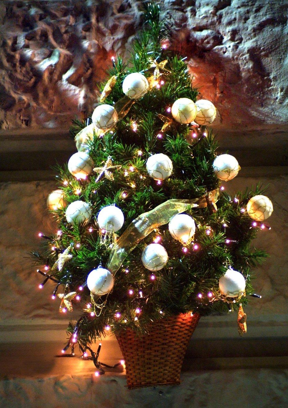 Addobbi con luci natalizie napoli napoli my garden srl for Addobbi albero