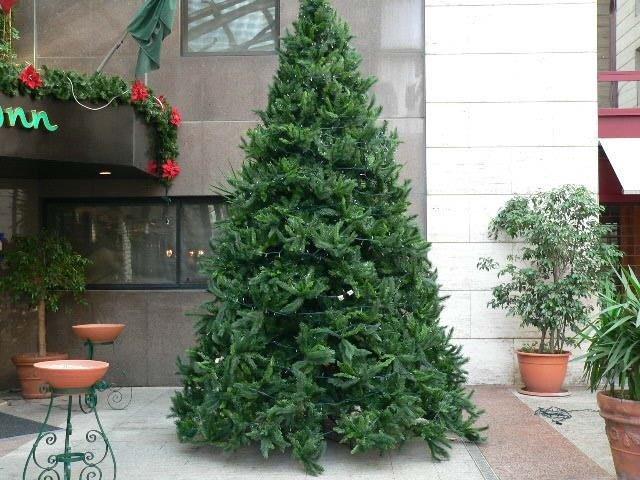 Albero di Natale ecologico, esterno Holliday Inn, Napoli