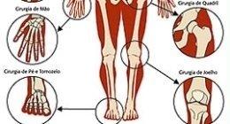 scheletro inferiore