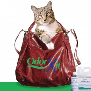 Remove cat liter box odor anywhere