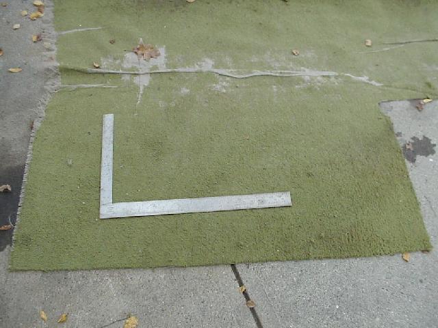 extreme odor elimination green carpet