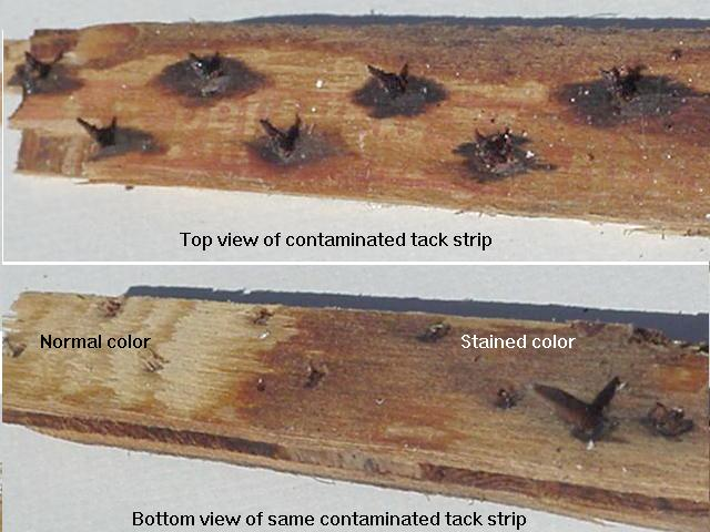 extreme odor elimination tack strip contamination
