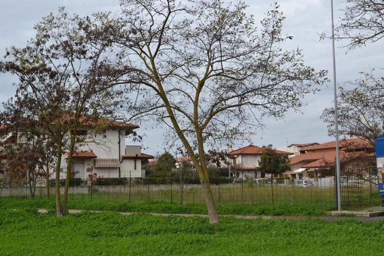 Terreno in Zona residenziale