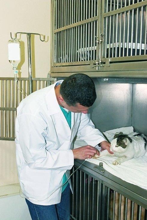 preparazione intervento chirurgico