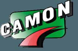 www.camonchimica.it/