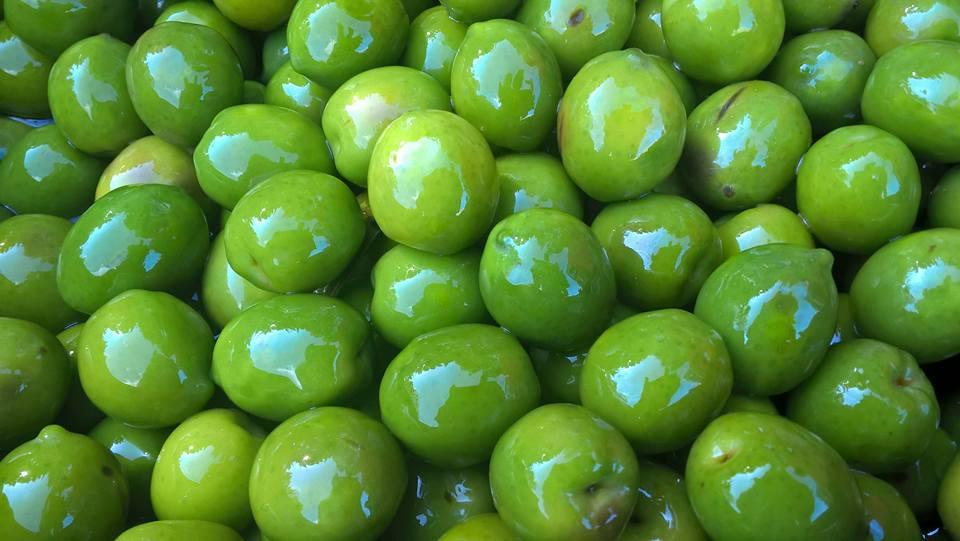 Olive verdi sottolio
