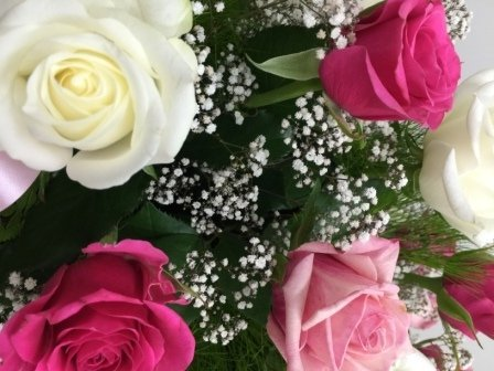 Pink and White Roses - Tony Hollands Funerals