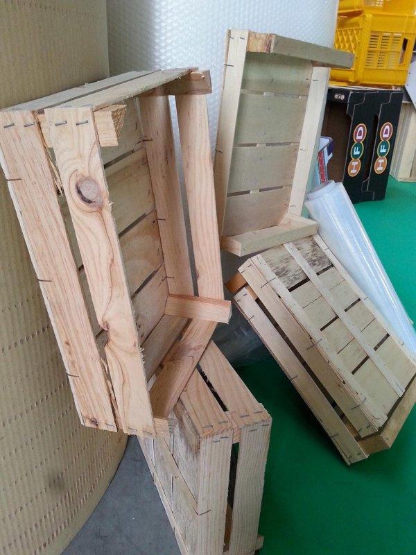 legno - vignola - modena - dario bergonzini