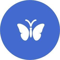 icona farfalla