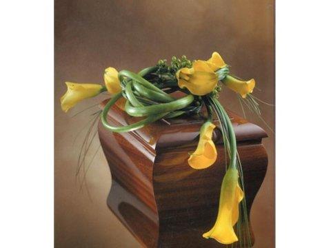 cremazione salme terni