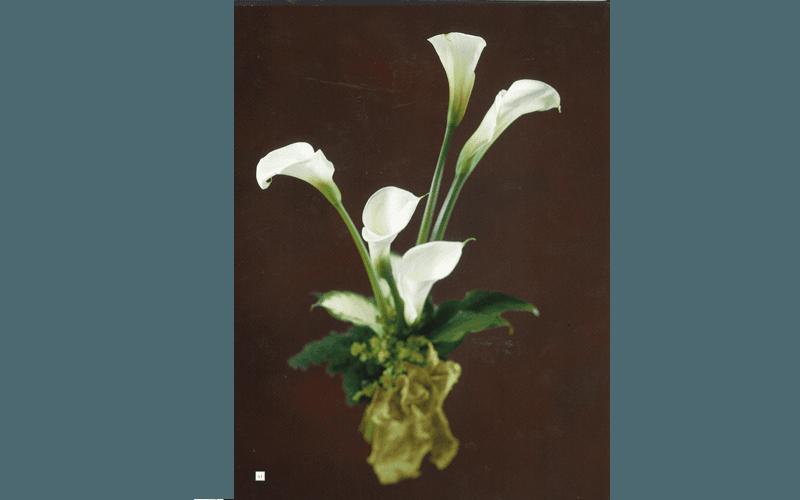 fiori per camera ardente terni