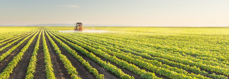 macchina agricola in un campo