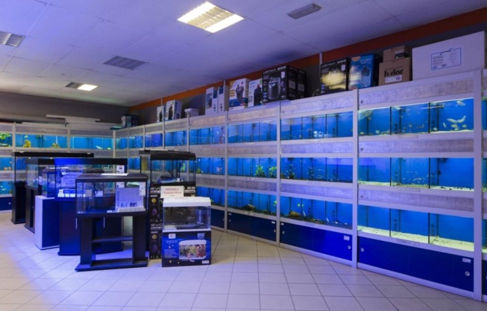 accessori per acquari