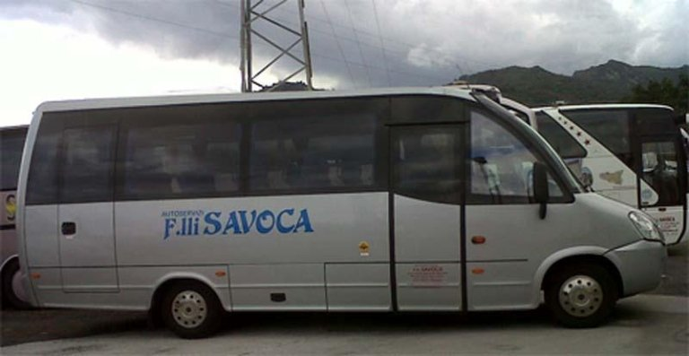 Minibus Iveco a65