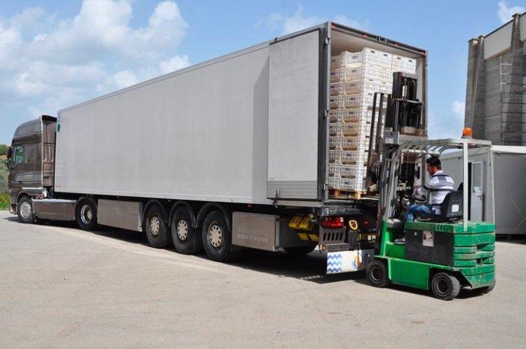 Vista posteriore del muletto caricando il camion
