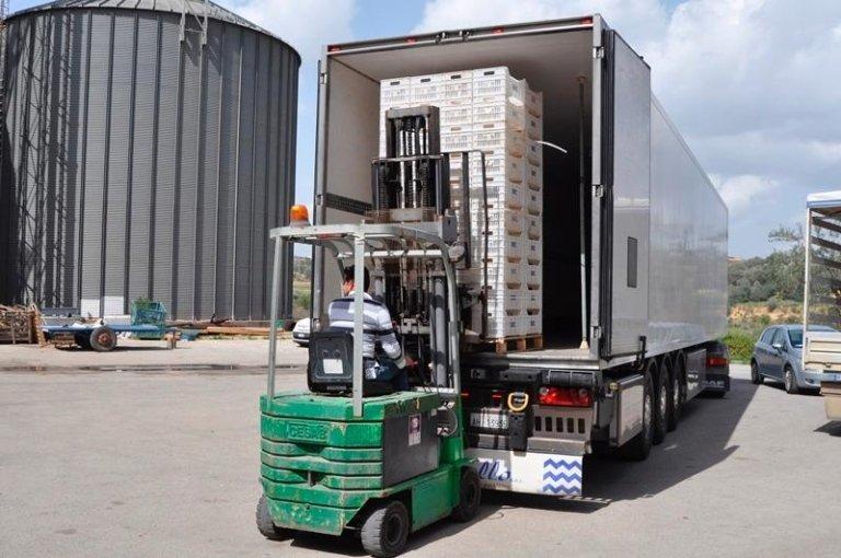 Muletto che carica della merce dentro un camion