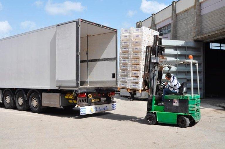 muletto che trasporta il carico verso un camion