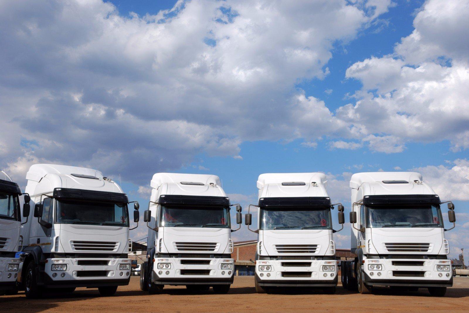 Cinque camion blanco