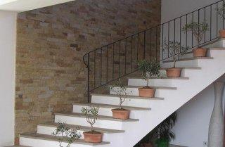 dei gradini con dei vasi e delle piantine