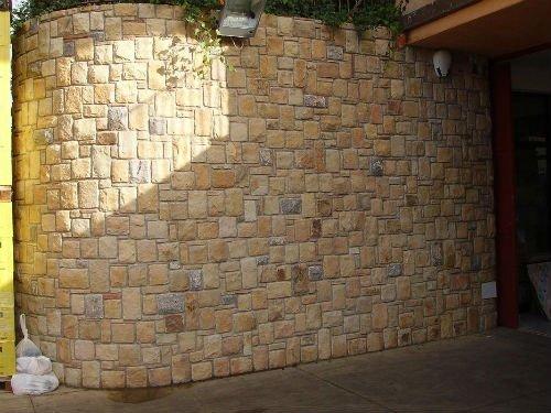 un muro in pietra e delle piante rampicanti