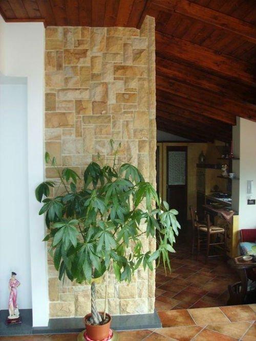 un vaso di una pianta e un muro in pietra